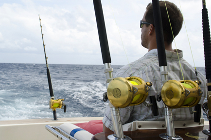 Big Game and Reef Fishing Contribution